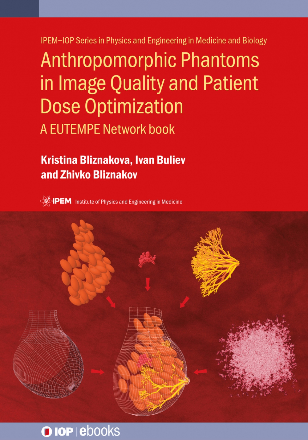 Jacket Image For: Anthropomorphic Phantoms in Image Quality and Patient Dose Optimization