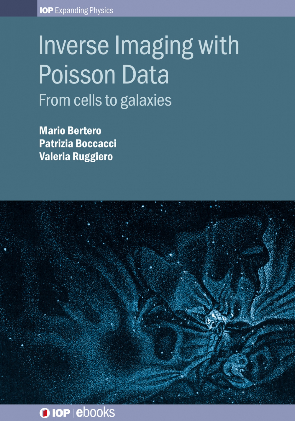 Jacket Image For: Inverse Imaging with Poisson Data