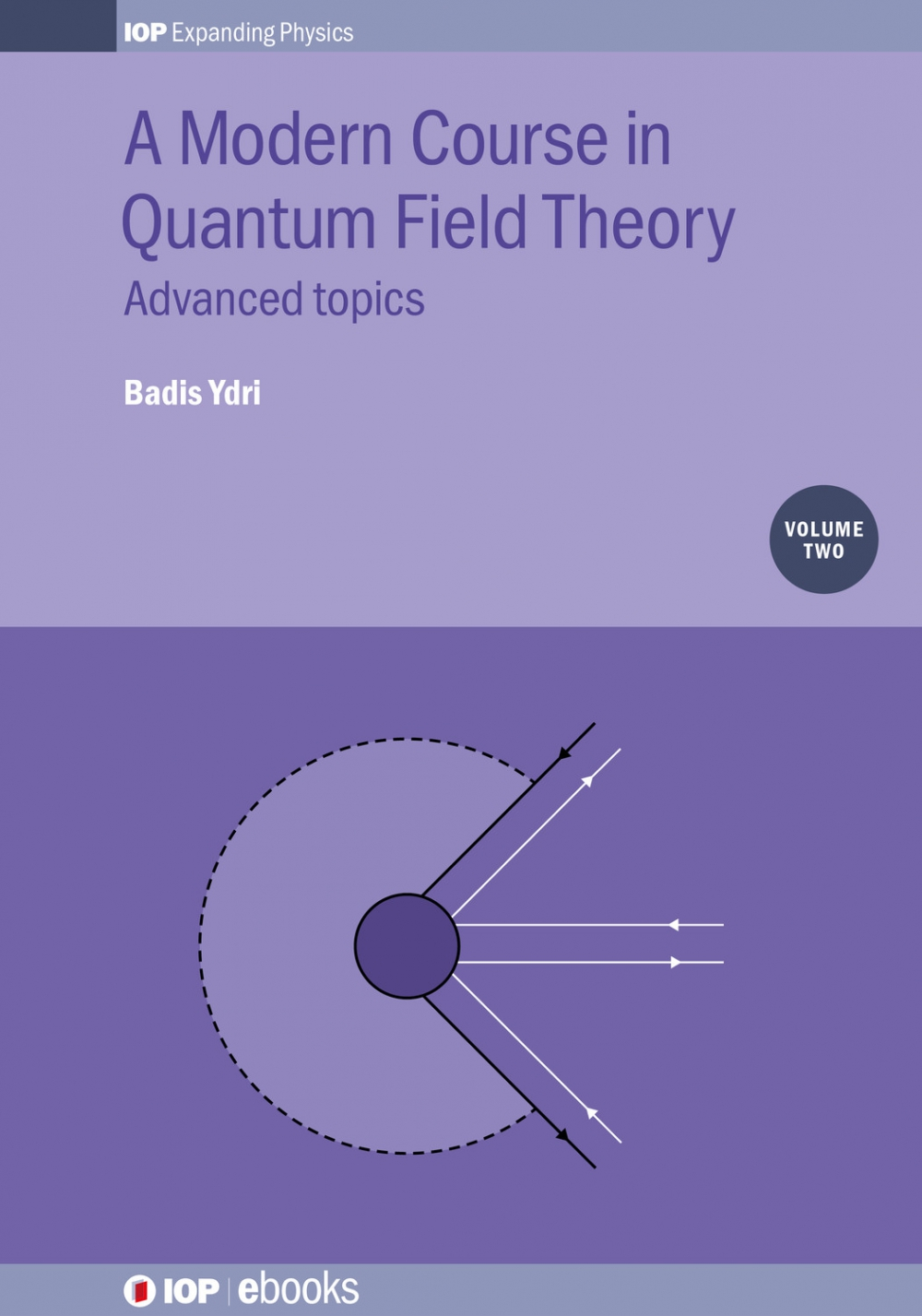 Jacket Image For: A Modern Course in Quantum Field Theory, Volume 2