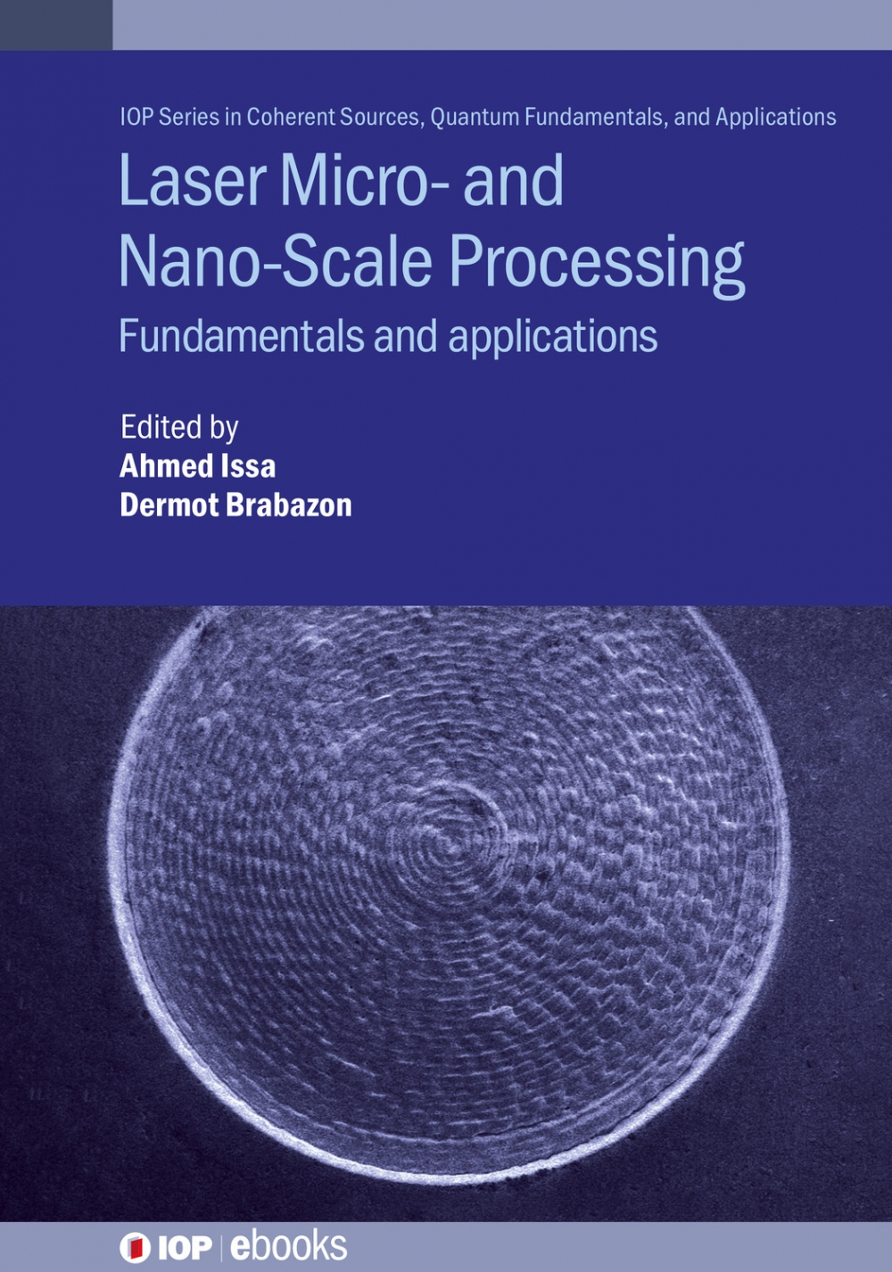 Jacket Image For: Laser Micro- and Nano-Scale Processing