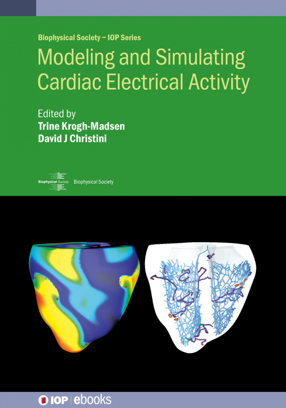 Jacket image for Modeling and Simulating Cardiac Electrical Activity