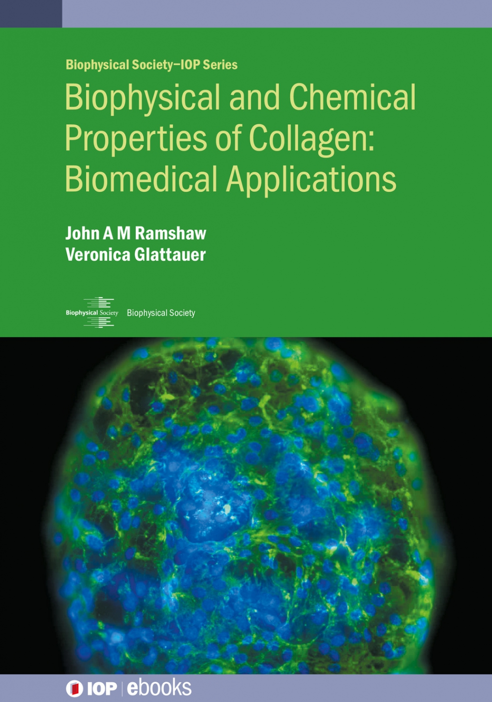 Jacket Image For: Biophysical and Chemical Properties of Collagen: Biomedical Applications