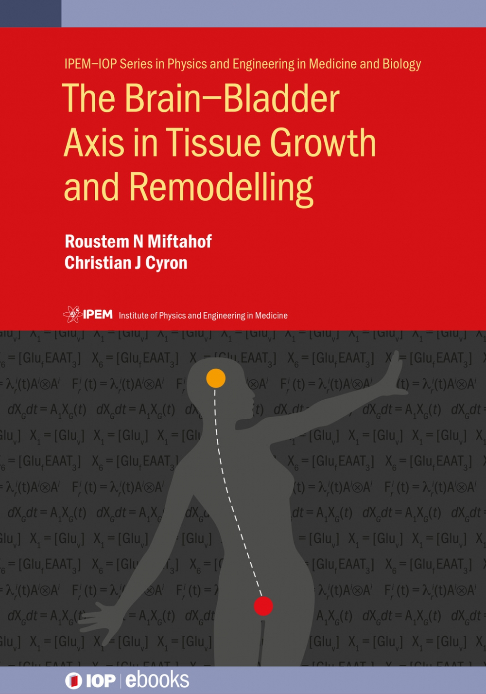 Jacket Image For: The Brain–Bladder Axis in Tissue Growth and Remodelling